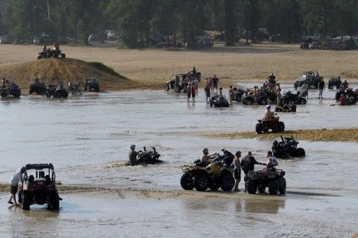 This photo shows the muddy shores of Busco Beach with several UTVs and ATVs enjoying the fun.