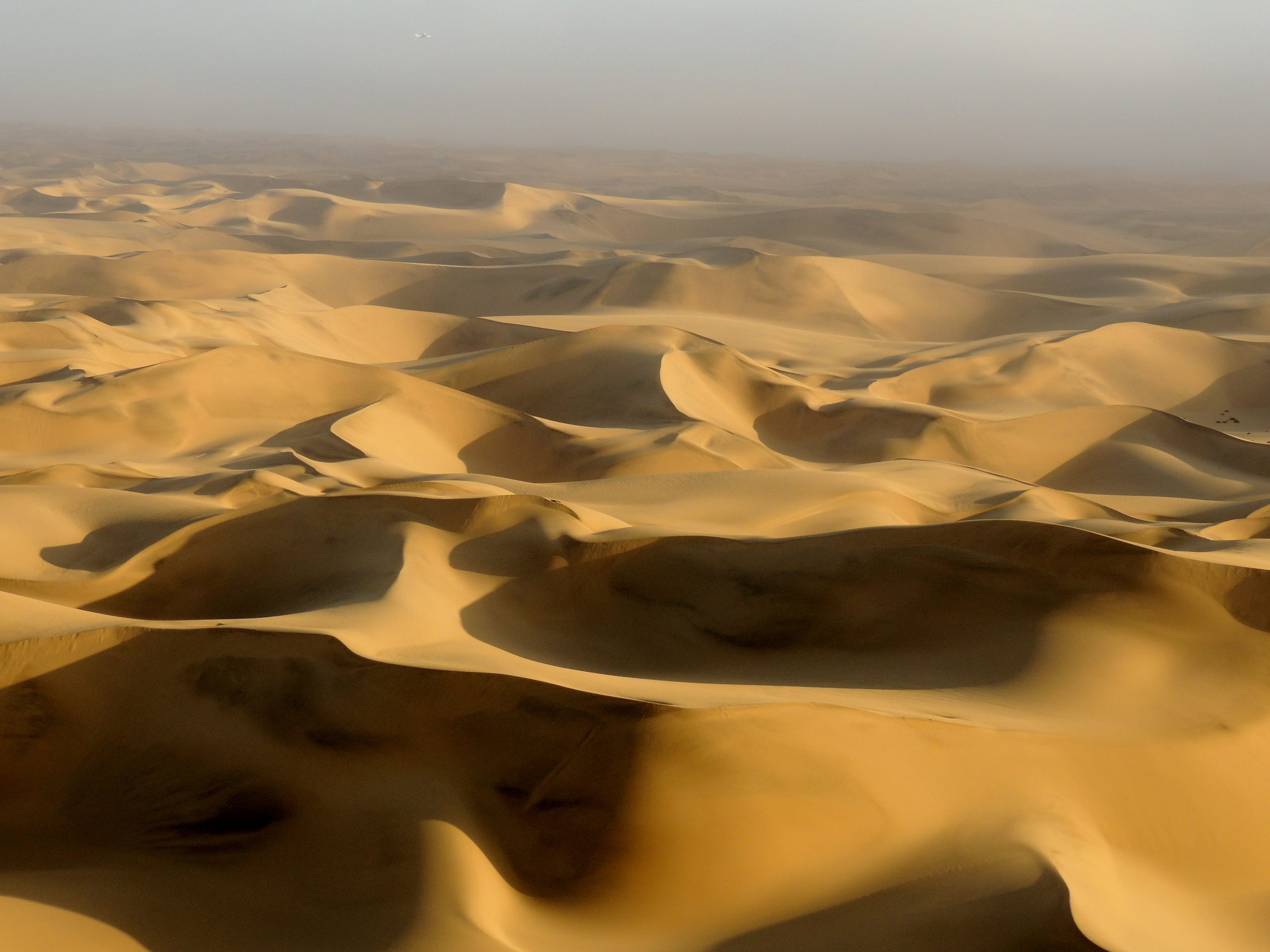 The nearly infinite dune sea