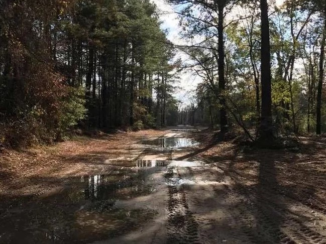 This photo shows a muddy trail through the woods at River Run ATV Park in Texas.