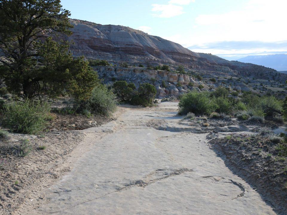 A trail at Bangs Canyon in Colorado