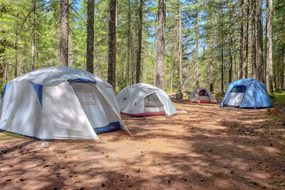 Four tents are set up in a primitive camp site in the middle of the woods. Camping is a popular lodging option for riders following the TransAmerica Trail.