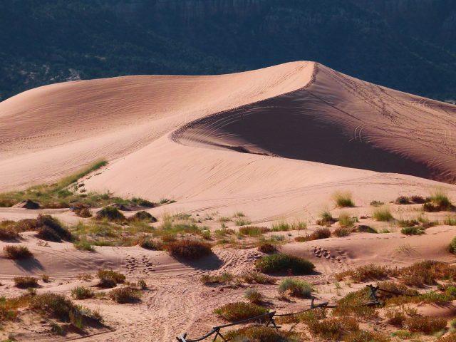 The Best UTV Dune Riding Spots