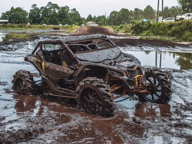 The Top 12 UTV and ATV Trails in Florida