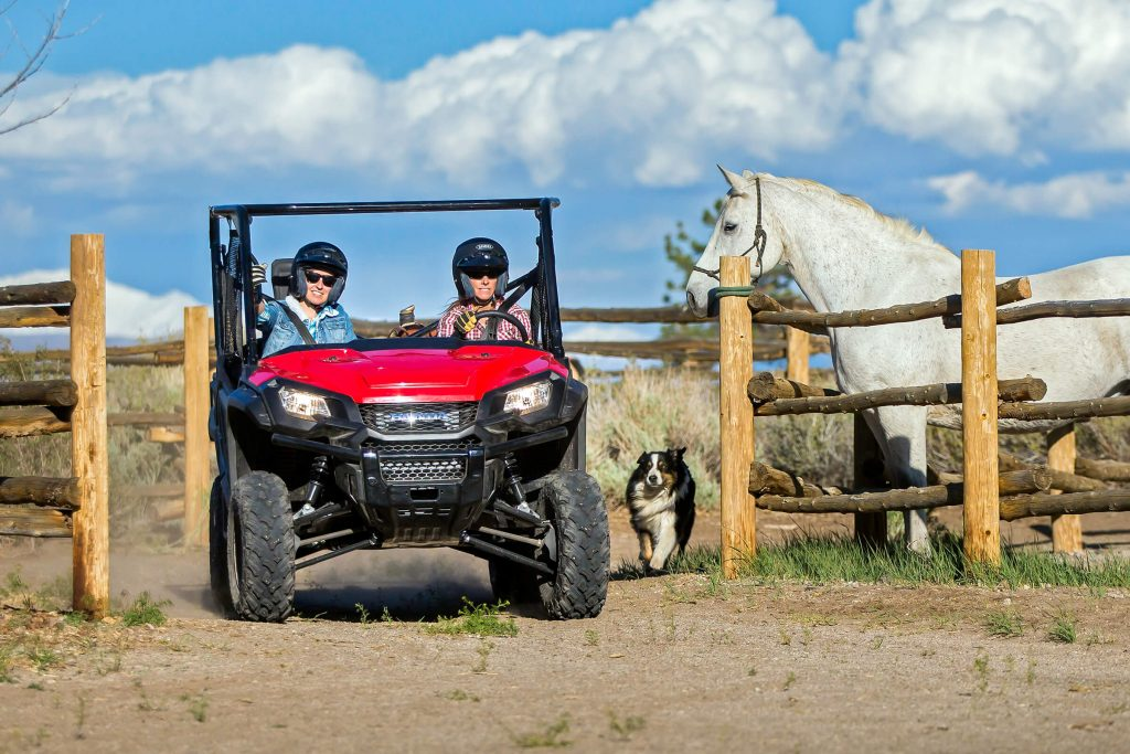 A Honda Pioneer 1000 on a ranch, next to a dog and horse